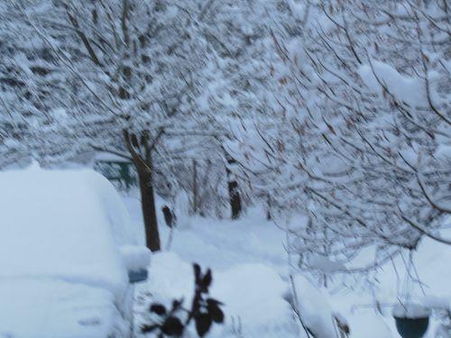 030414__neige