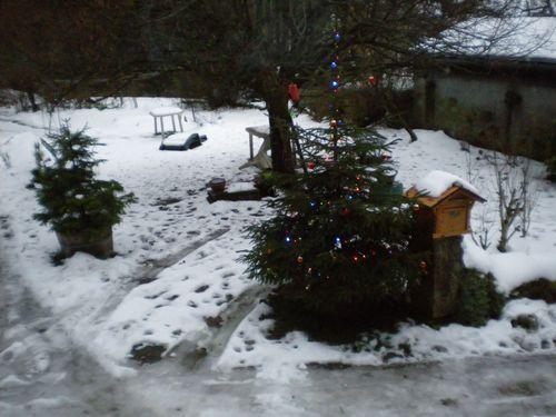 010315_mousse_neige (2)