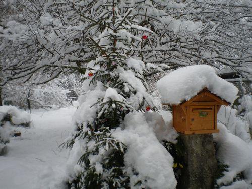 012015_neige (2)
