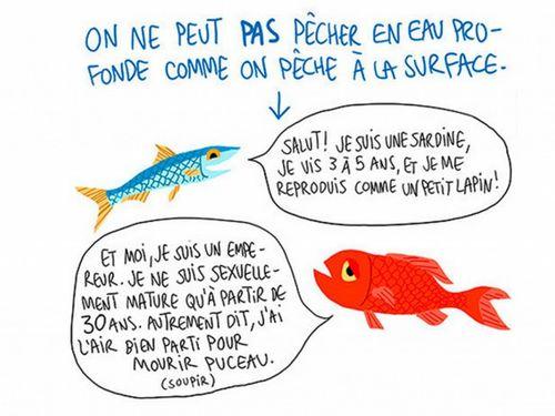 042215_poissons