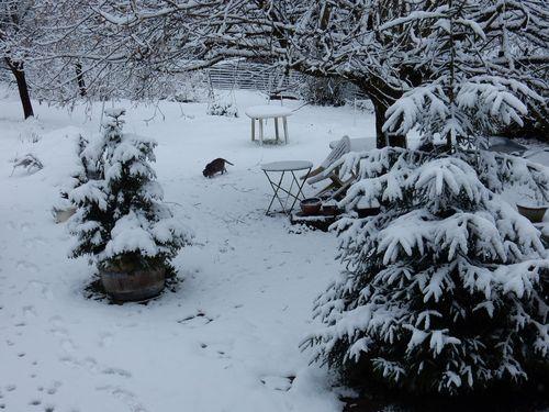 030616_snow