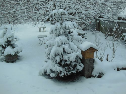 030816_snow