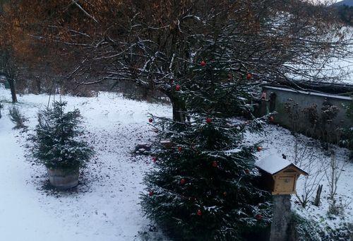 010517_neige0