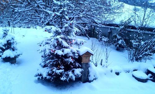 011417_neige