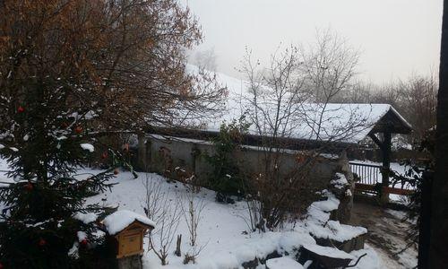 012617_winter (2)